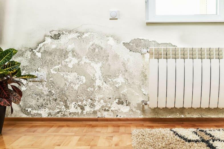 Umidit in casa ecco come risolvere il problema - Come ridurre l umidita in casa ...